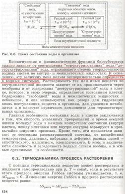 slesarev4-134-small